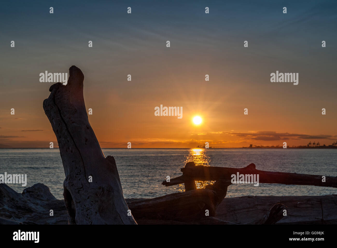 sunset over driftwood in Point Roberts, Washington State, USA - Stock Image
