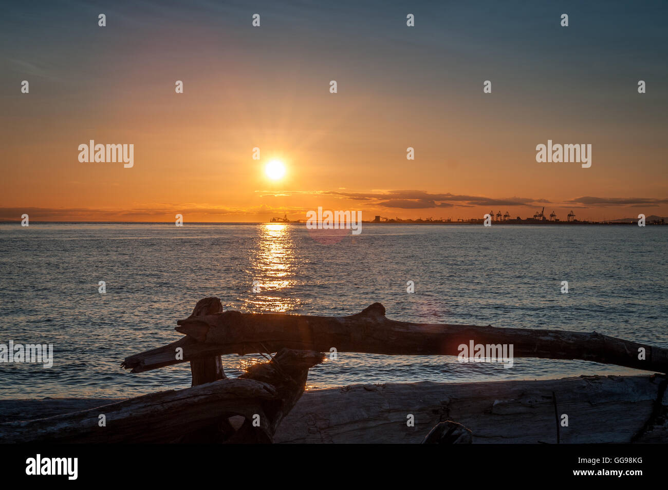 sunset over driftwood  at twilight in Point Roberts, Washington State, USA - Stock Image