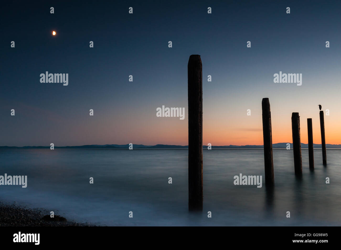 Night picture of Point Roberts pilings and silky water at night time wit seagull on a post - Stock Image