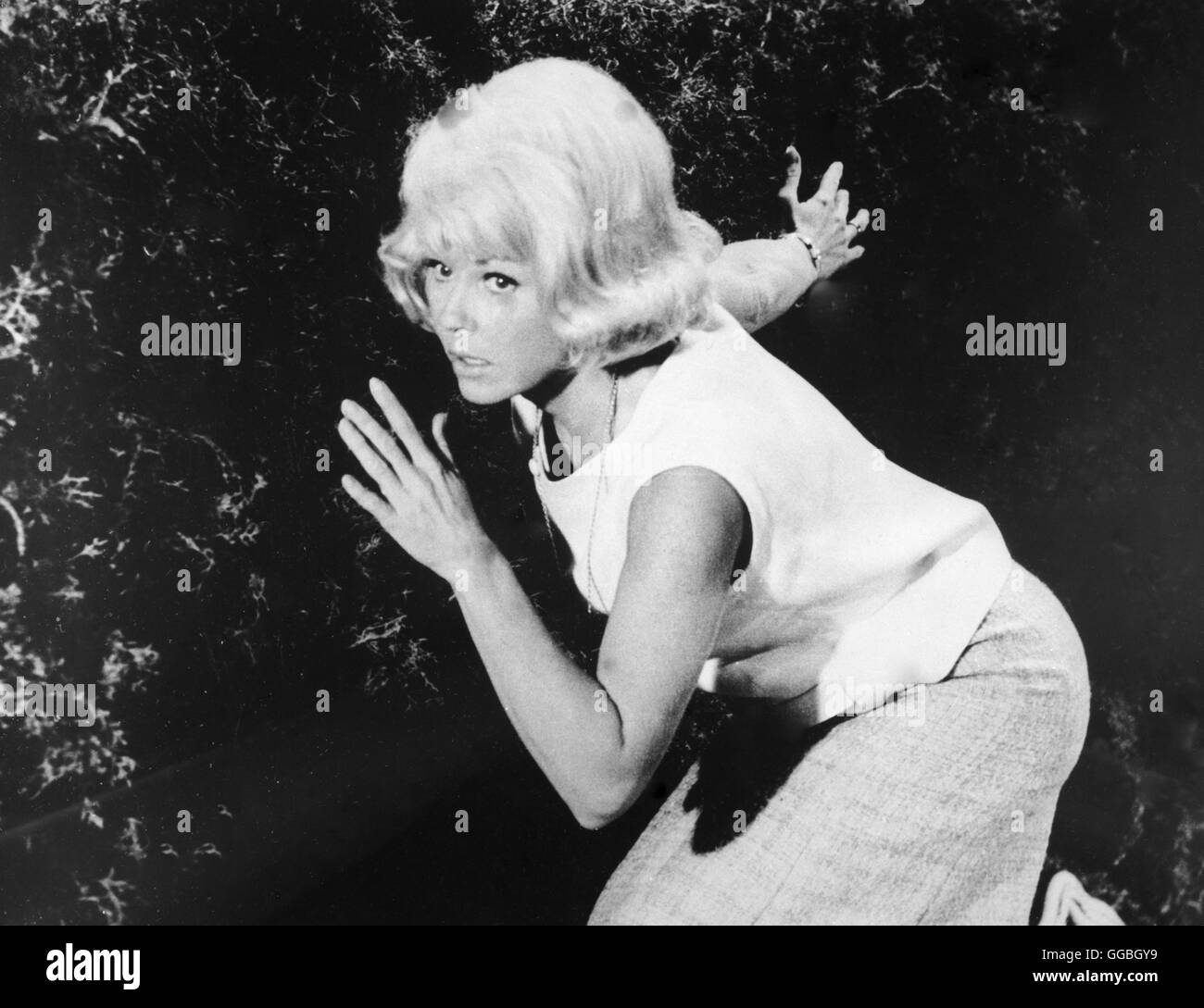 Move over, Darling / DORIS DAY in 'Move over, Darling' (1963) BB36046 - Stock Image