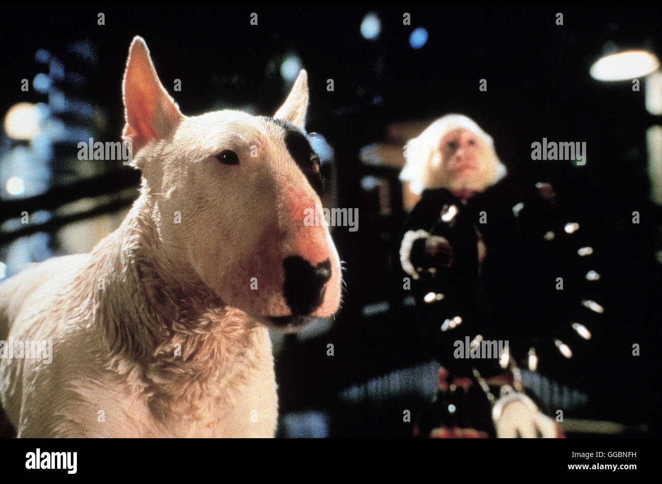 SCHWEINCHEN BABE IN DER GROSSEN STADT / Babe: Pig In The City Australien 1998 / George Miller Babe fährt in die grosse Stadt, um den Bauernhof vor dem drohenden Ruin zu retten. Auf der Reise trifft Schweinchen Babe eine erstaunliche Vielfalt neuer Tiere. Babe lernt aus seinen gefährlichen Abenteuern, vom bissigen Pittbull bis zum Tierversuchslabor, wie ein freundliches und unerschütterliches Herz die Sorgen der Welt lindern kann. Regie: George Miller aka. Babe: Pig In The City Stock Photo