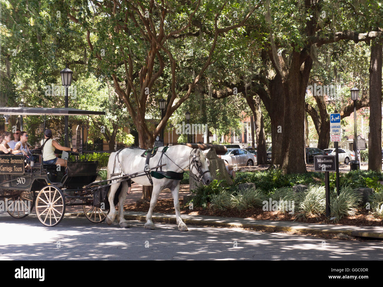 Savannah Georgia Historic Carriage Stock Photos Savannah Georgia