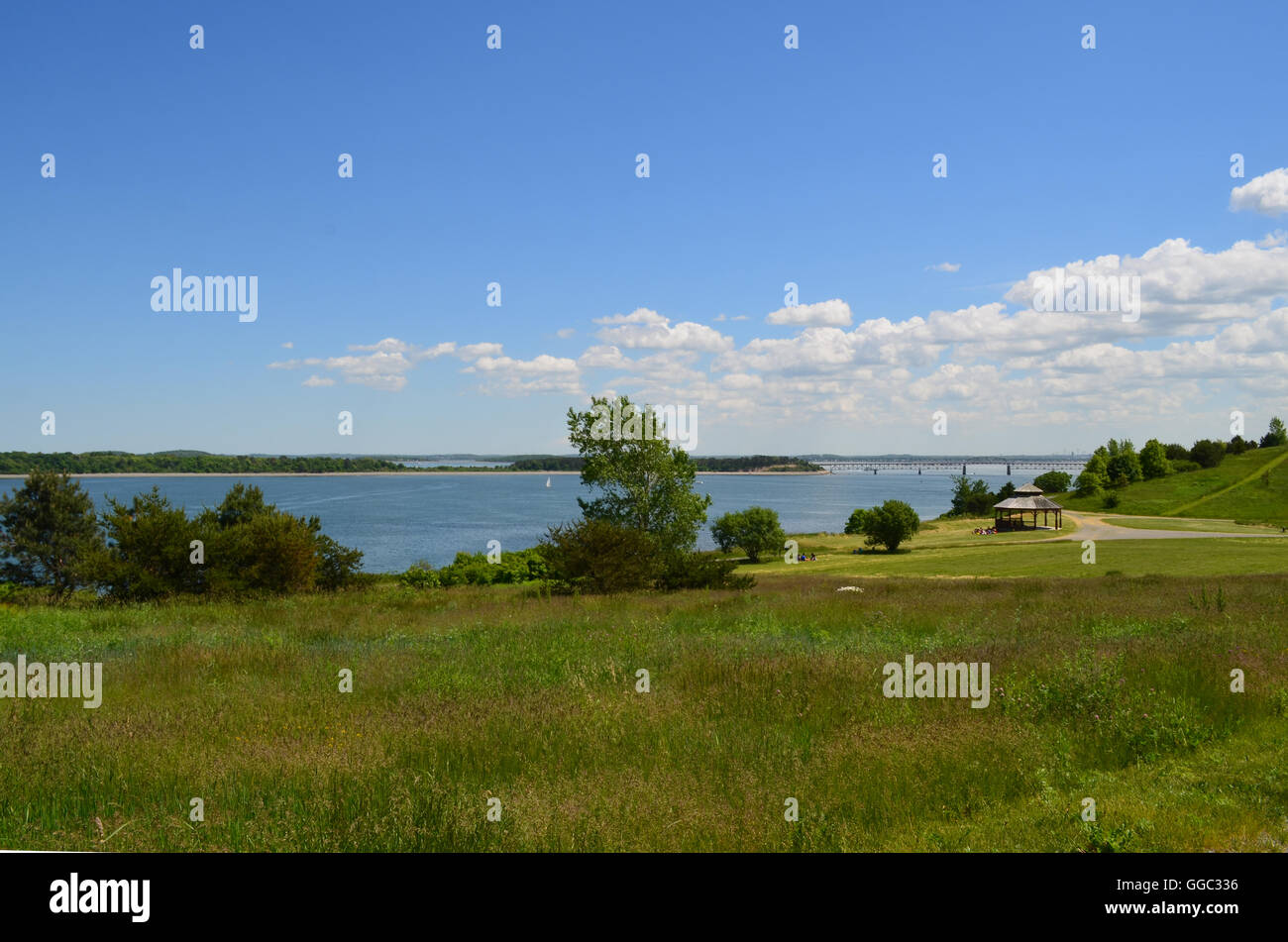 Lush green Spectacle Island in Boston Harbor. - Stock Image