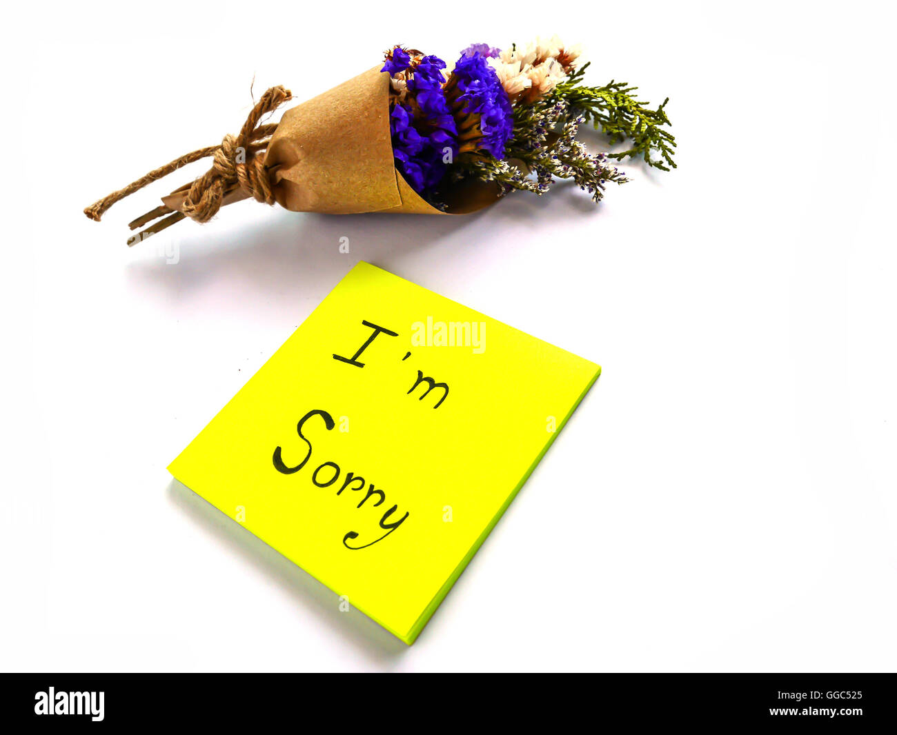 I'm sorry post it and dry bouquet on white background - Stock Image