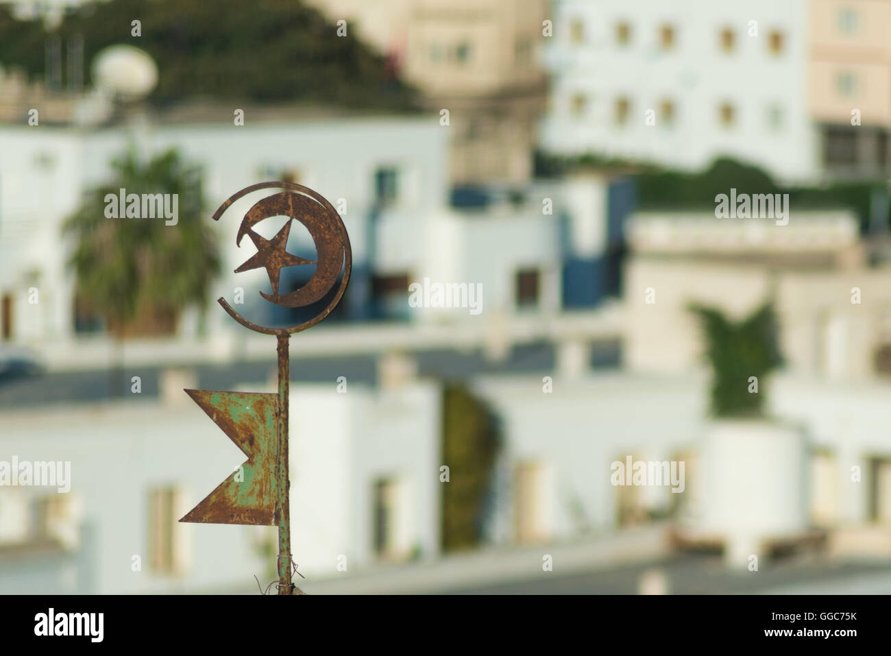 Symbol of Tunisia with Buildlings in Background - Stock Image