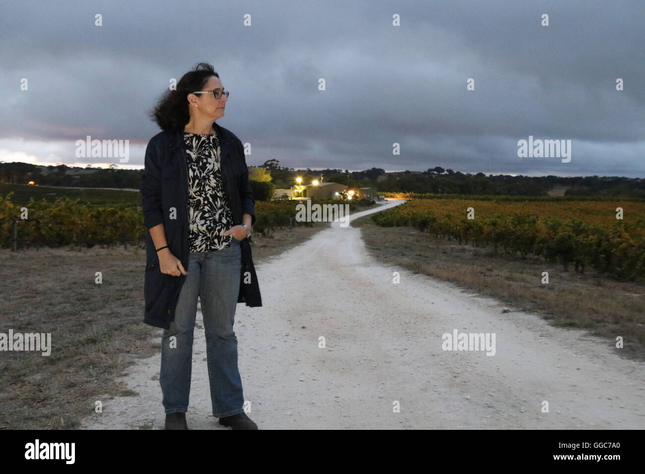 Winemaker Louisa Rose outside a vineyard at dawn of a harvest day at Pewsey Vale wines, Eden Valley, Australia - Stock Image