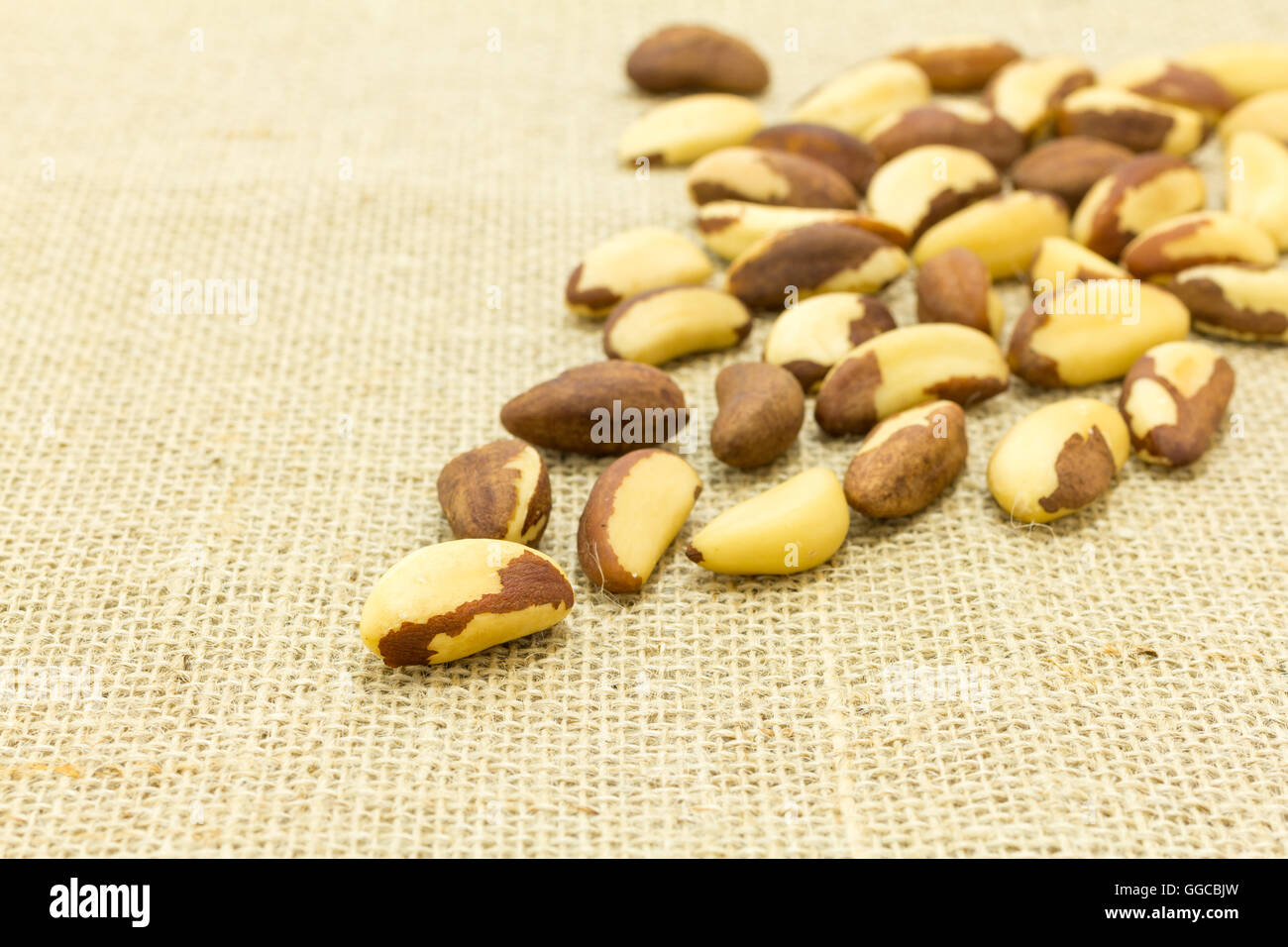 Burlap and Brazil Nut with selective focus. Space for copy. This seed is a rich source of selenium and natural antioxidant - Stock Image