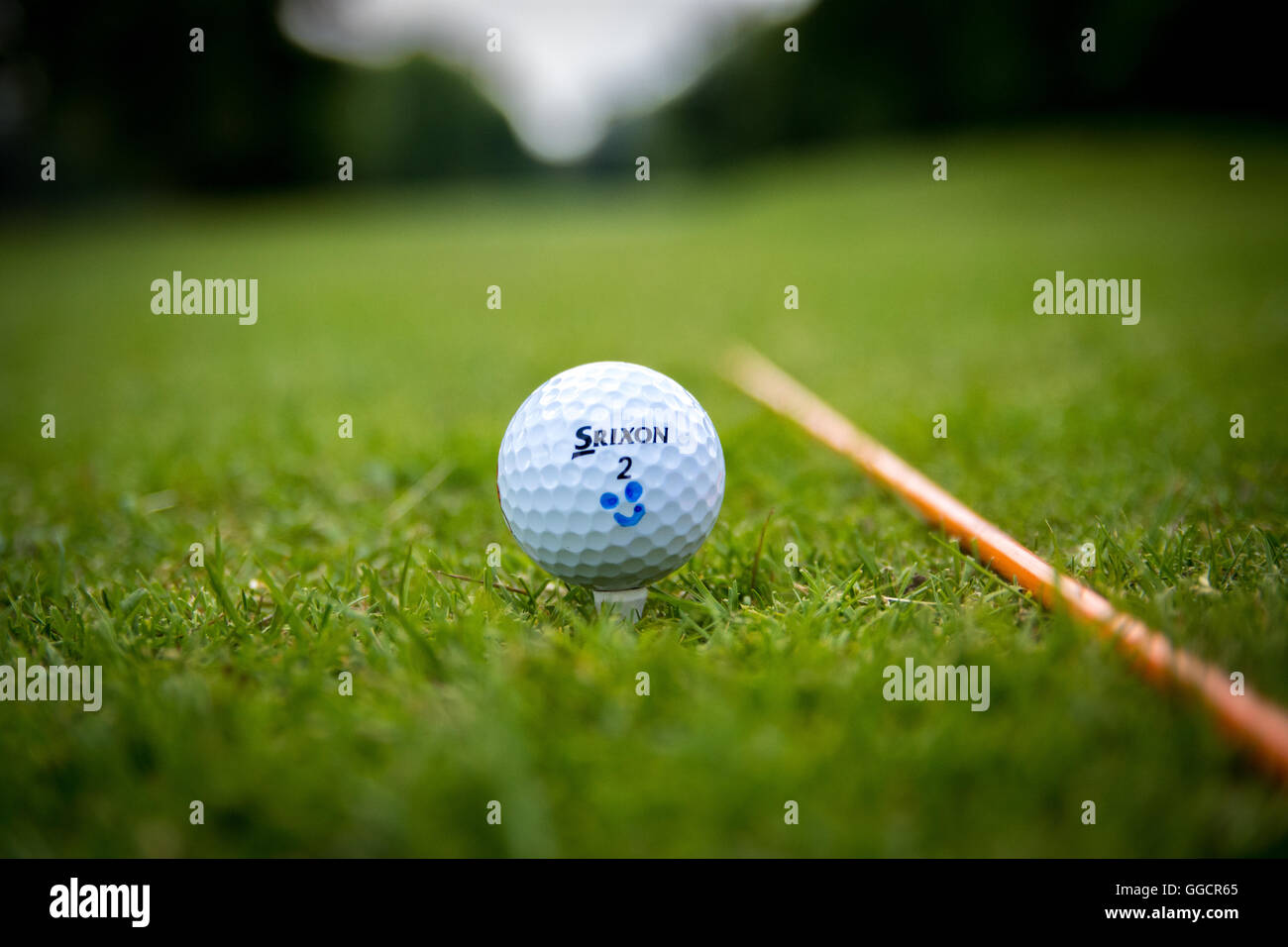 A Golf Ball resting upon a tee with alignment stick alongside - Stock Image