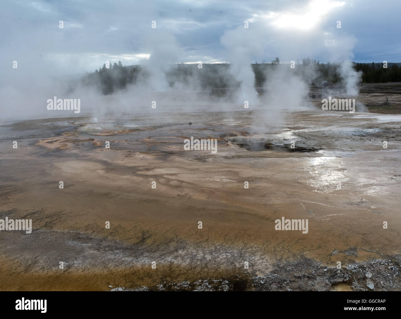 Steam rises from vents driven by the Yellowstone geothermal heat. - Stock Image