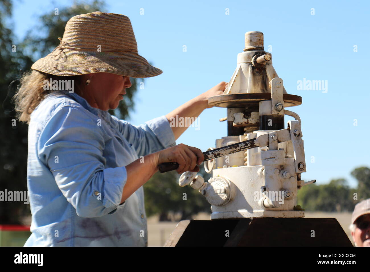 winemaker sue bell pressing grapes with a hydraulic grape press during harvest time at  Bellwether Wines, Coonawarra, - Stock Image