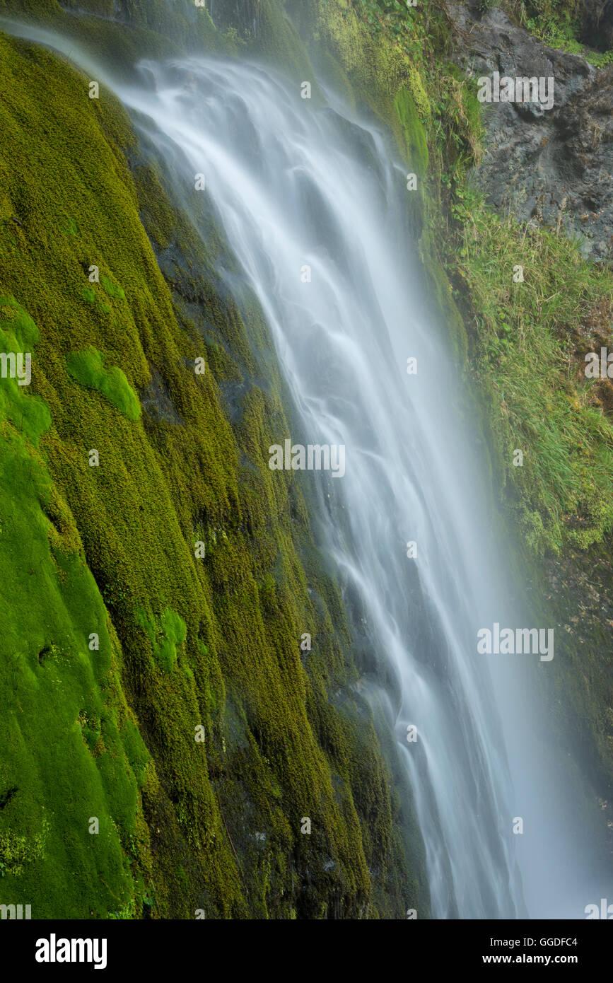 South America; Argentina, Patagonia, Rio Negro, Esquel - Stock Image