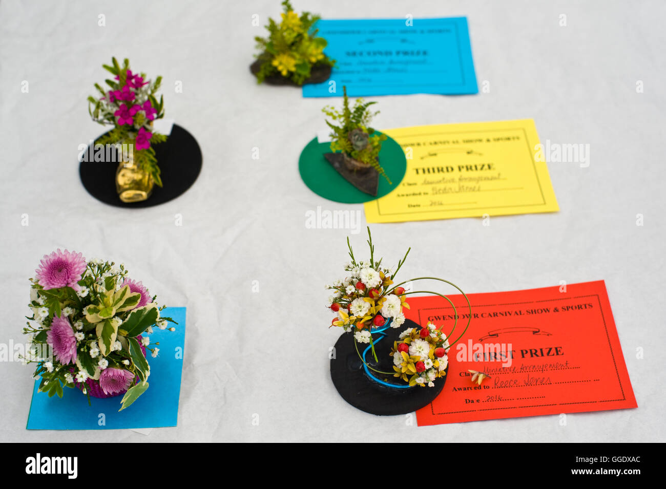 Flower Show First Prize Stock Photos Flower Show First Prize