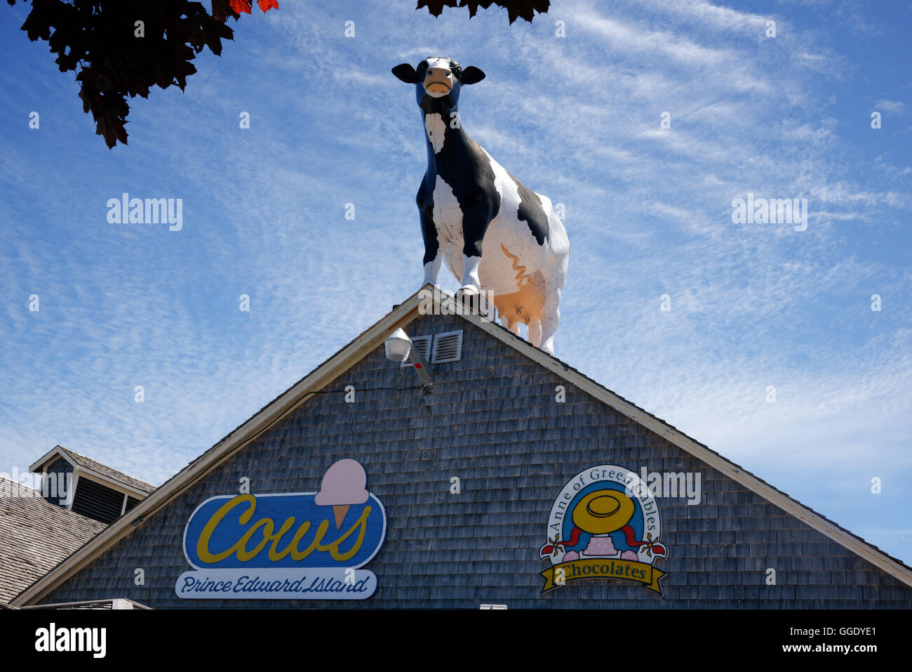 Cow's Ice Cream shop in Cavendish, prince Edward Island