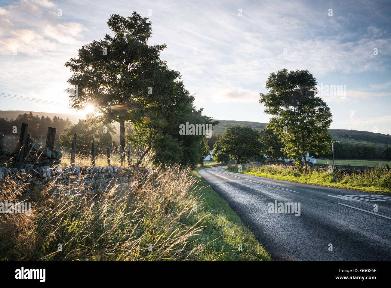 Teesdale, near Forest-in-Teesdale, County Durham, UK - Stock Image
