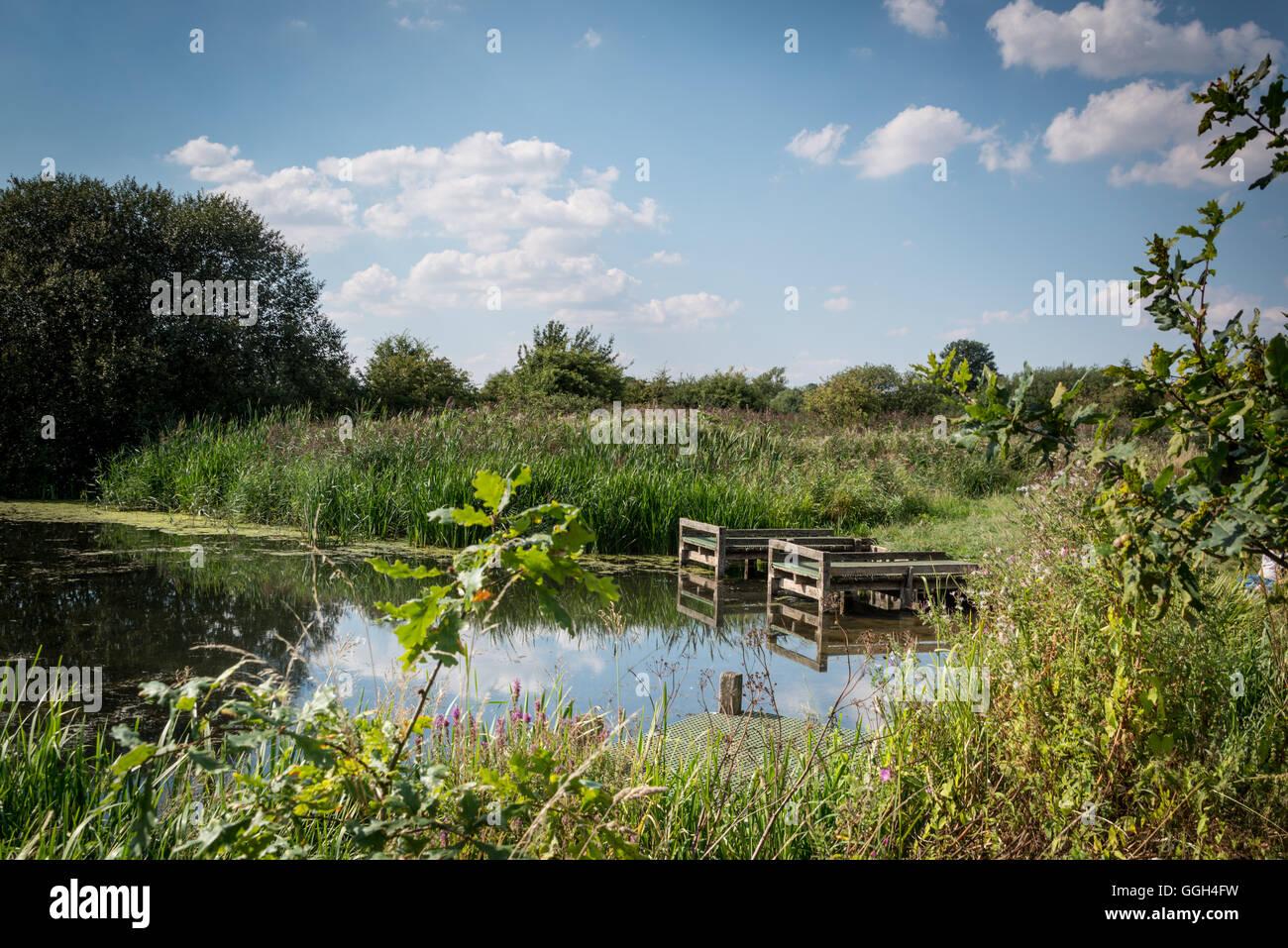 Conder green picnic site