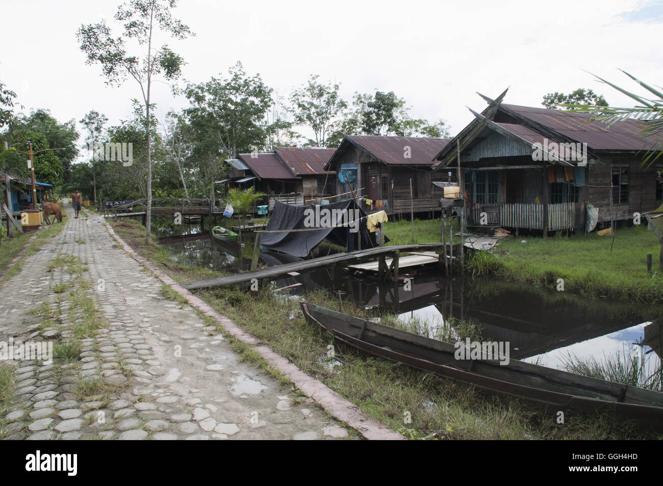 A village in Borneo village, kalimantan, Indonesia. Village located on the banks of sekonyer river in kalimanthan - Stock Image
