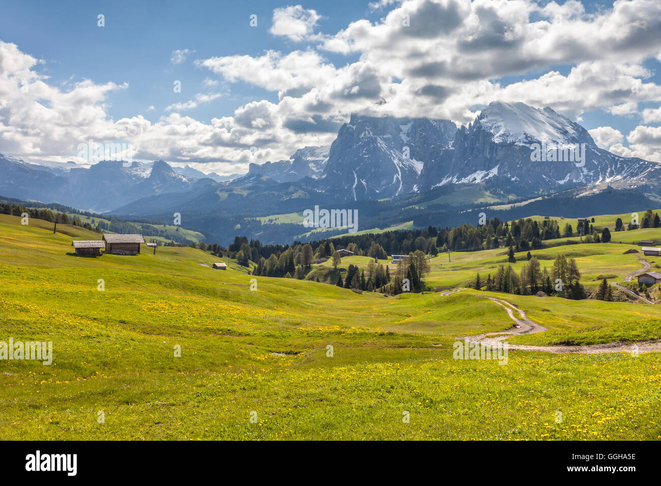 geography / travel, Italy, South Tyrol, Alm on the Seiser mountain pasture with view to the Plattkofel, Additional - Stock Image