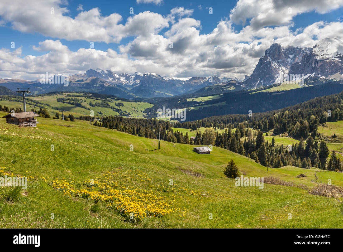 geography / travel, Italy, South Tyrol, Alm on the Seiser mountain pasture, Additional-Rights-Clearance-Info-Not - Stock Image