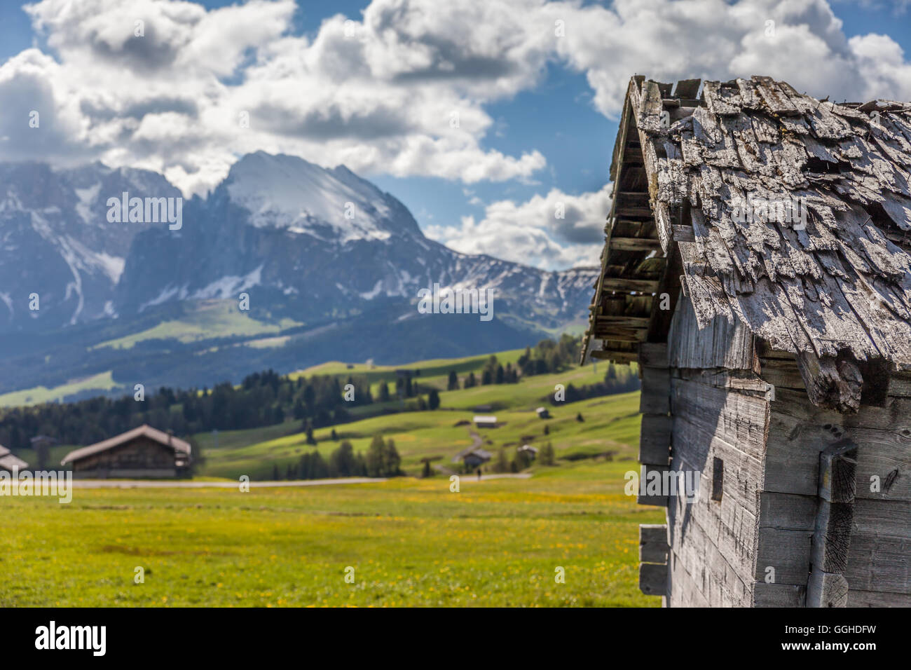 geography / travel, Italy, South Tyrol, Alpine hut on the Seiser mountain pasture, view to the Plattkofel, Additional - Stock Image