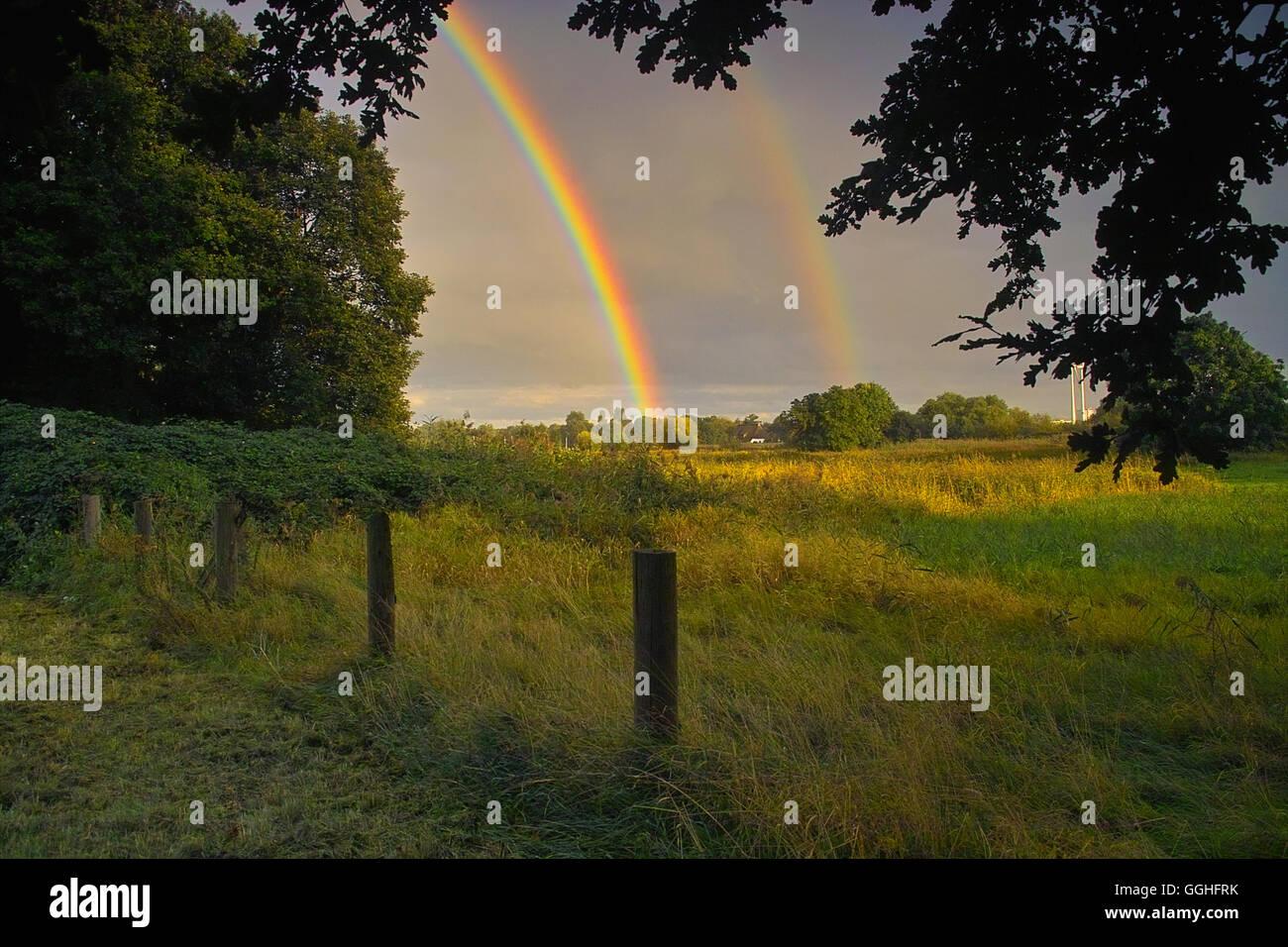 Rainbow over landscape, pasture / Regenbogen über Landschaft in Bremen-St Magnus - Stock Image