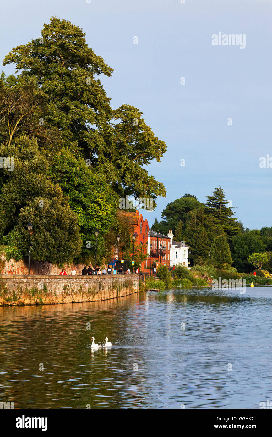 Quay along the River Exe, Exeter, Devon, England, Great Britain - Stock Image