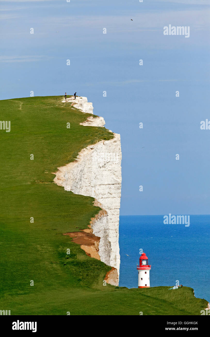 Chalk cliffs, Beachy Head, Eastbourne, East Sussex, England, Great Britain - Stock Image