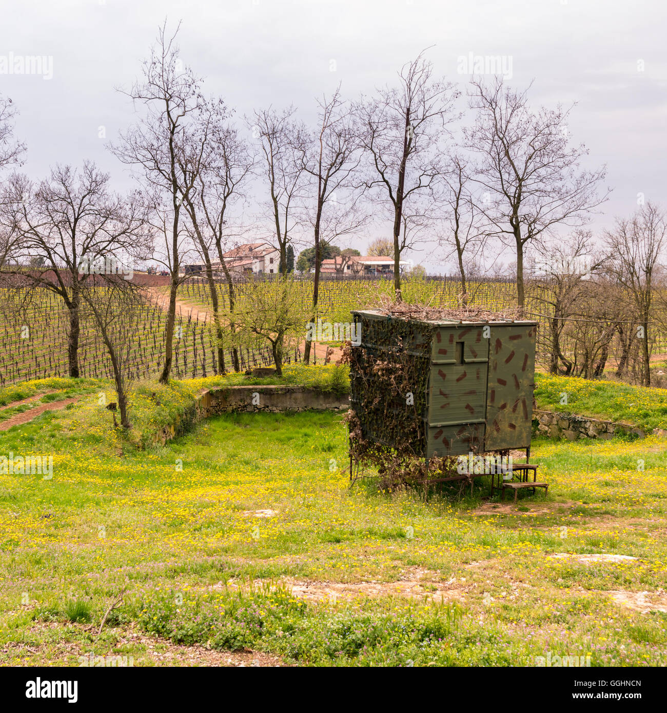 Camouflaged hut used to hunt migratory birds in Italy. - Stock Image