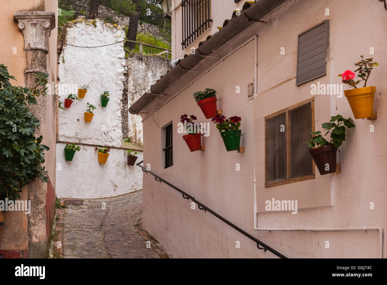 Spanish houses wall lined up with flower pots with assorted flowers in Sahara de la Sierra. - Stock Image