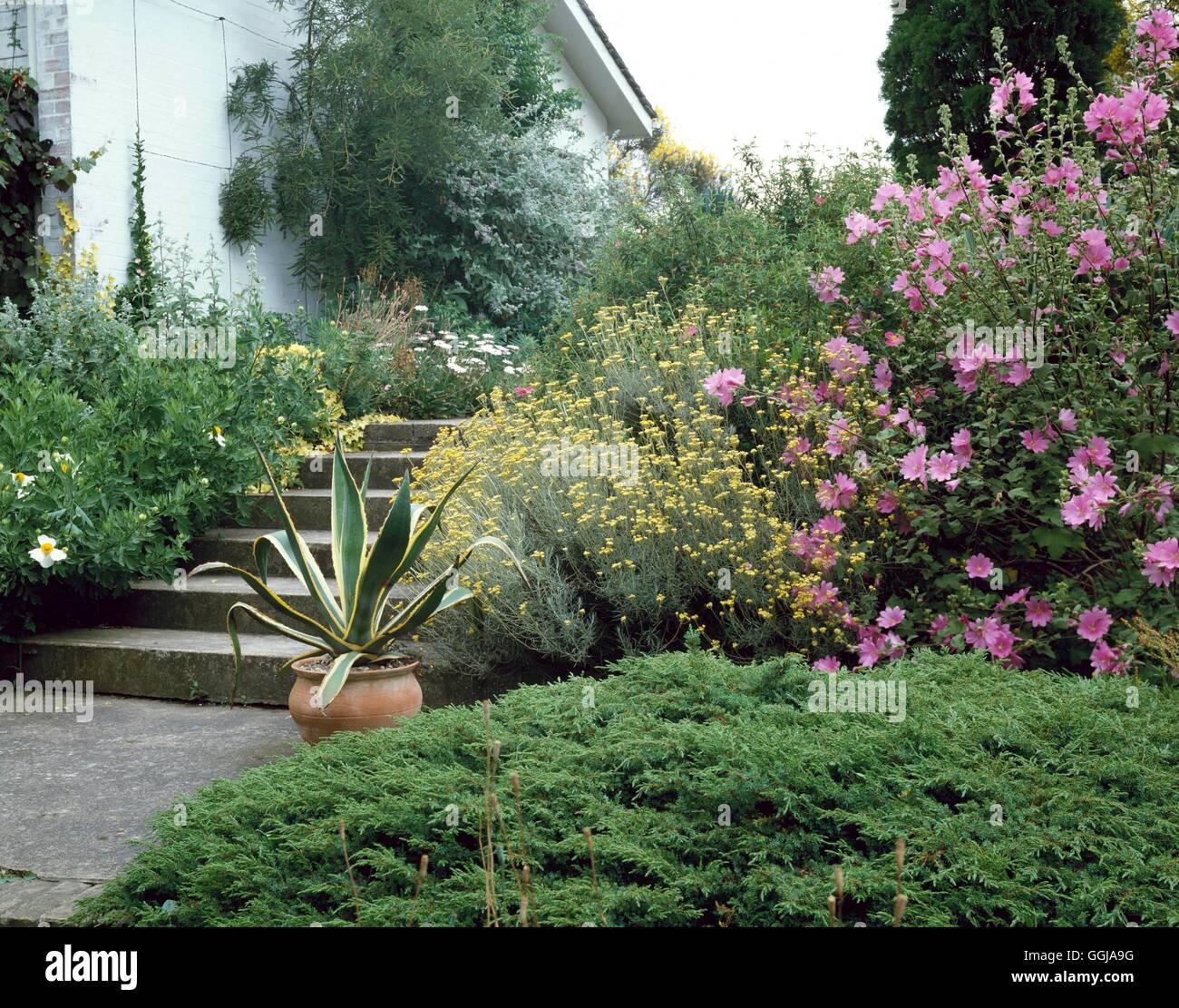 Beth Chatto Gardens The Original Mediterranean Garden Entrance