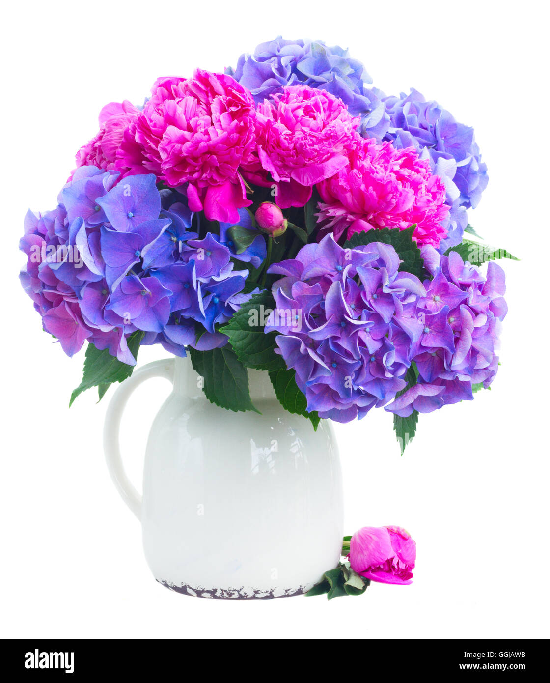 Bright pink and blue flowers - Stock Image