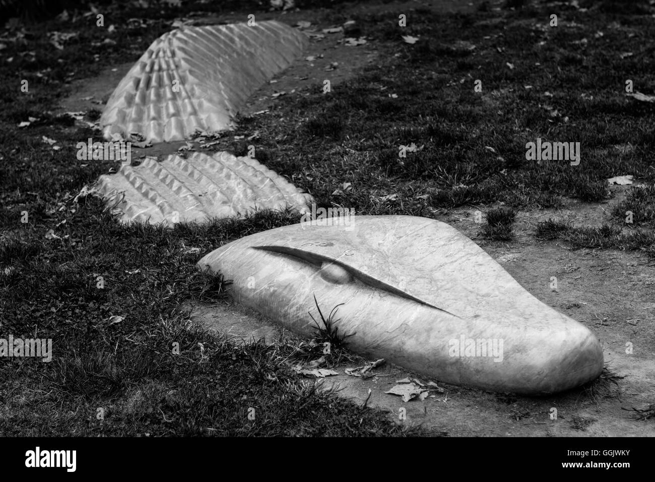 A marble crocodile emerging from the grass - Stock Image