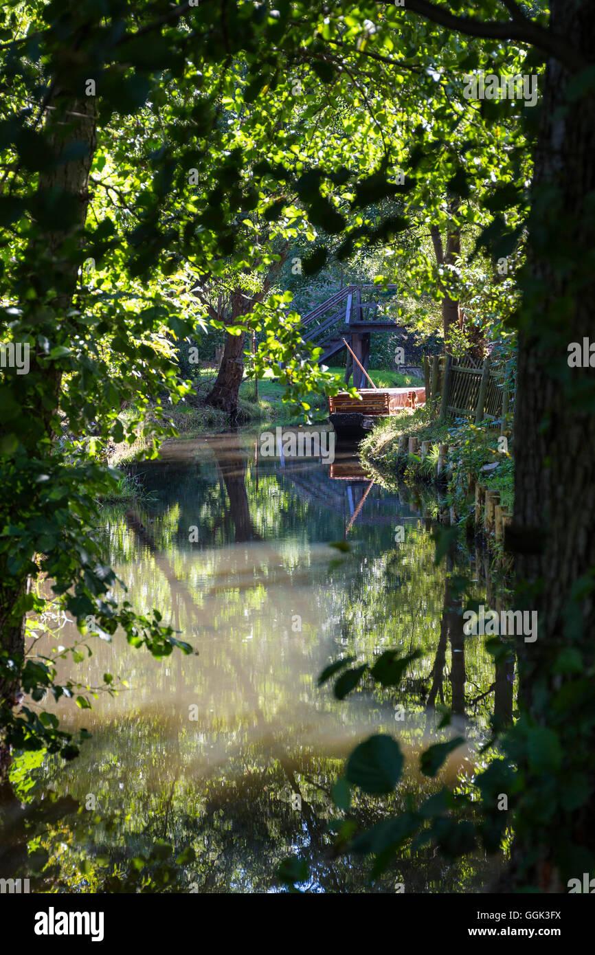River flowing through Spreewald, UNESCO biosphere reserve, Brandenburg, Germany, Europe - Stock Image