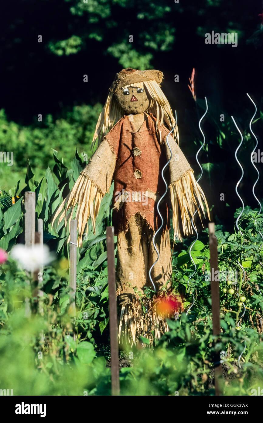 Scarecrow in the garden, Lehde, Spree Forest, Spreewald, UNESCO biosphere reserve, Brandenburg, Germany, Europe - Stock Image