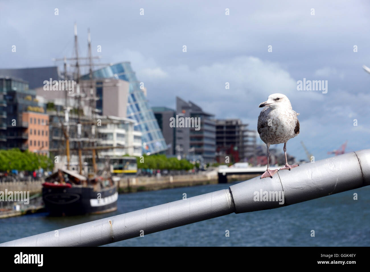 view over the Liffey River, Convention Centre Dublin, CCD, Docklands, Dublin, Ireland - Stock Image