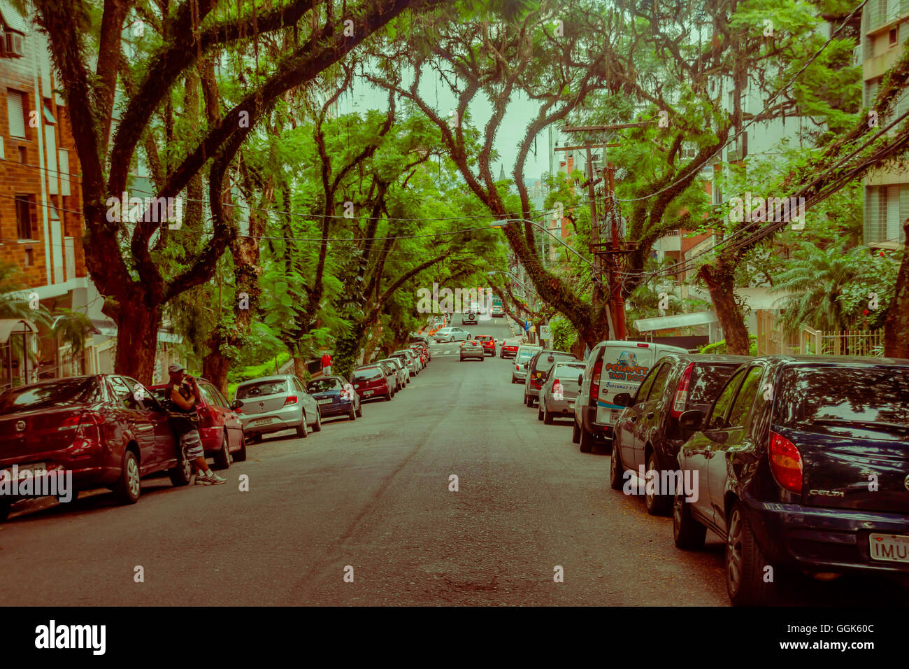 PORTO ALEGRE, BRAZIL - MAY 06, 2016: nice street with big trees in the sidewalks, lot of cars parked outside the - Stock Image
