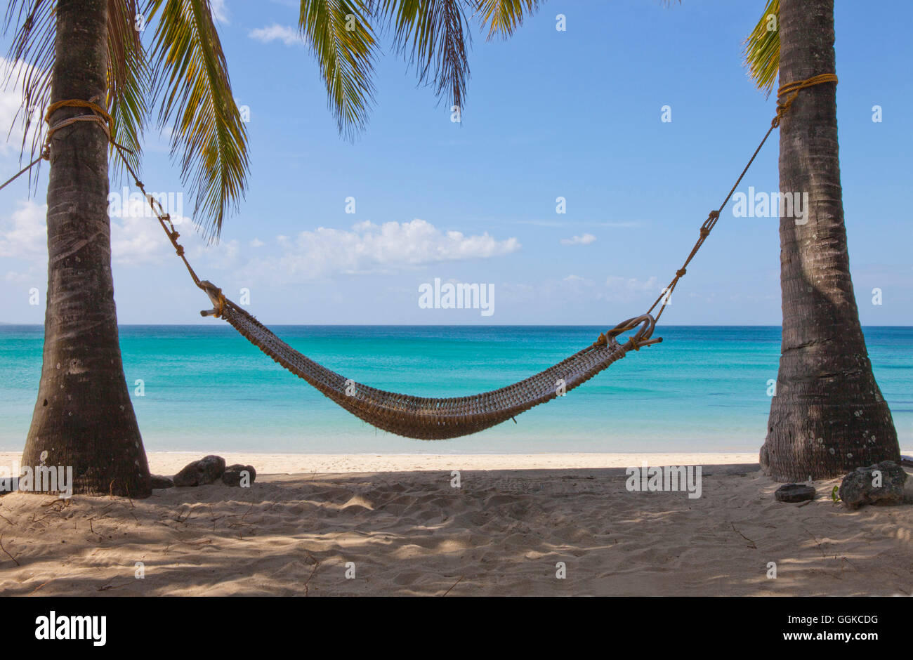 Hammock Between Two Palm Trees At Tropical Beach Stock