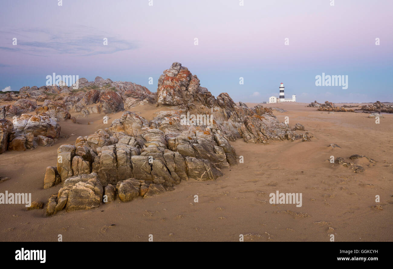 Cape Recife in the evening light, Algoa Bay, Indian Ocean, Port Elizabeth, Eastern Cape, Südafrika - Stock Image