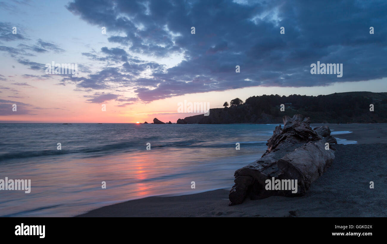 Coastal landscape at dusk, Navarro River Redwoods State Park, Pacific Coast Highway, Highway 1, West Coast, Pacific, - Stock Image