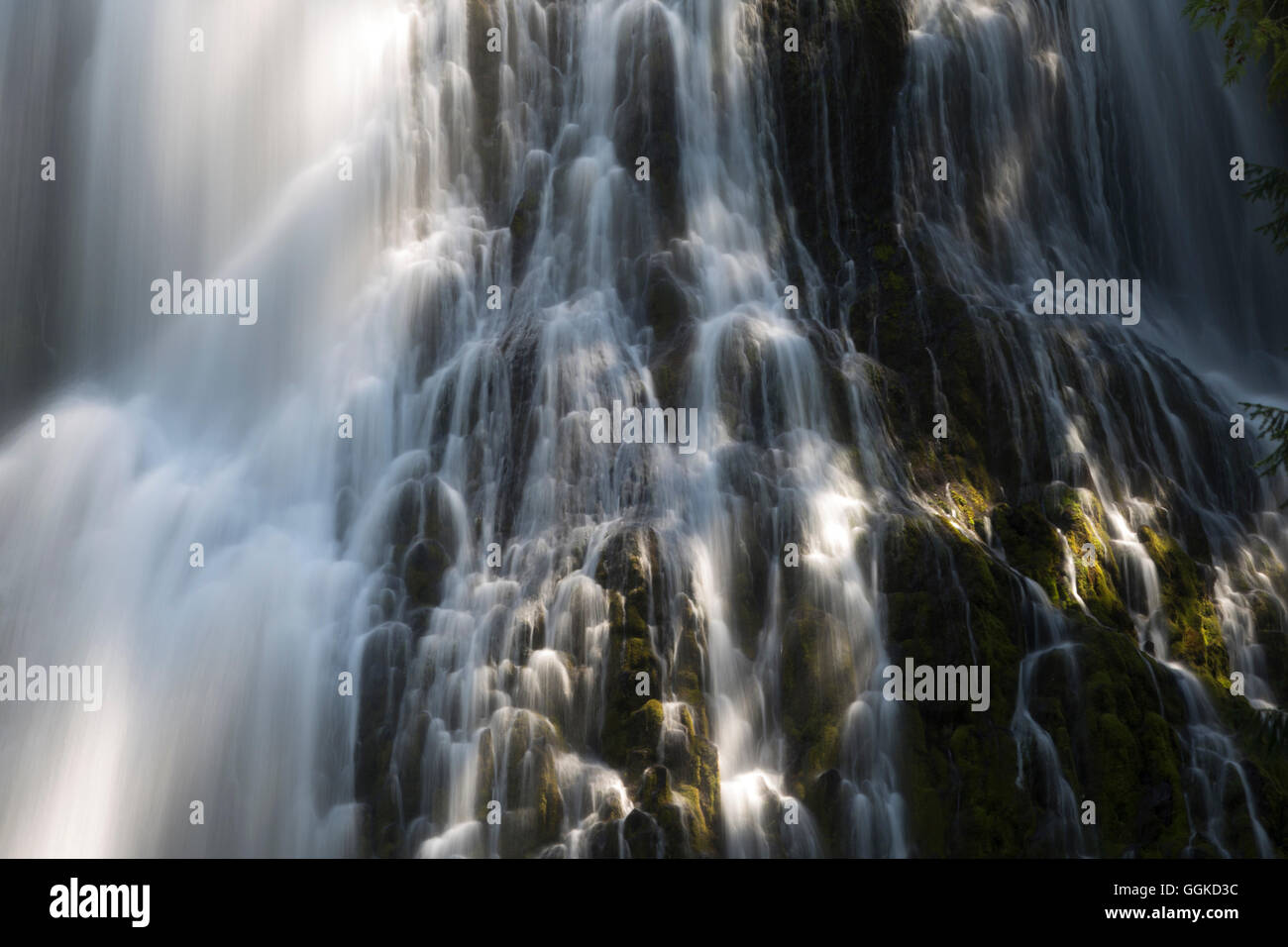 Waterfall in the Willamette National Forest, Three Sisters Wilderness, Oregon, USA Stock Photo