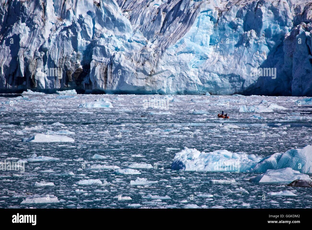 small boat in front of the icefall from the Knud Rasmussen Glacier, East Greenland, Greenland - Stock Image