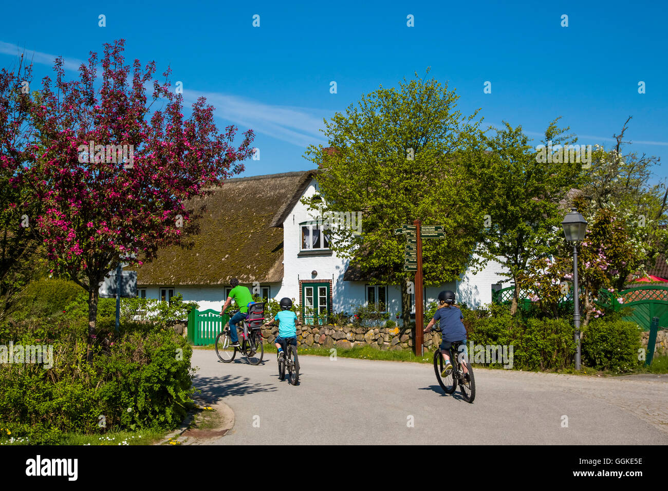 Cyclists infront of a thatched house in Nebel, Amrum Island, North Frisian Islands, Schleswig-Holstein, Germany - Stock Image