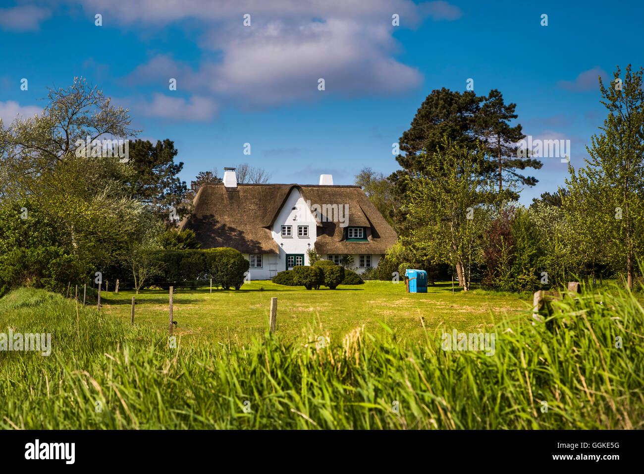 Thatched house, Nebel, Amrum Island, North Frisian Islands, Schleswig-Holstein, Germany - Stock Image
