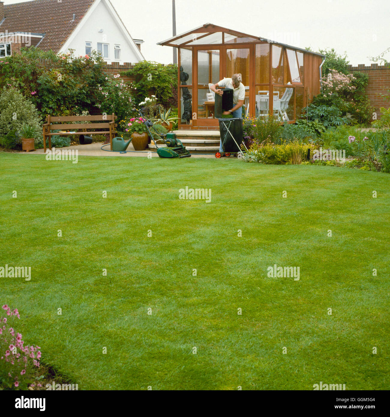 Lawn Care - Collecting up grass clippings   TAS045221 - Stock Image