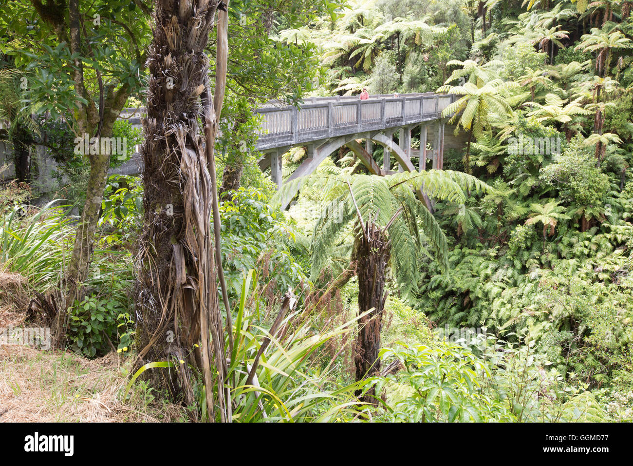 The Bridge to Nowhere, A canoe trip on the Whanganui River, North Island, New Zealand - Stock Image