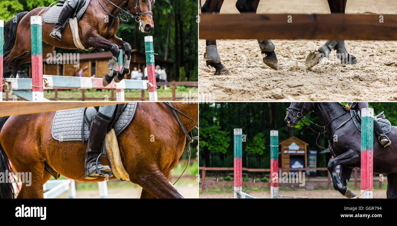 Collage Of Four Photos Riding A Horse Closeup Stock Photo Alamy