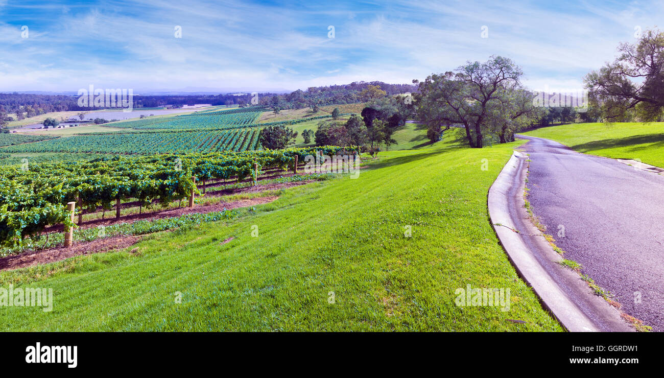 Audrey Wilkinson Vineyard in Hunter Valley, New South Wales, Australia - Stock Image