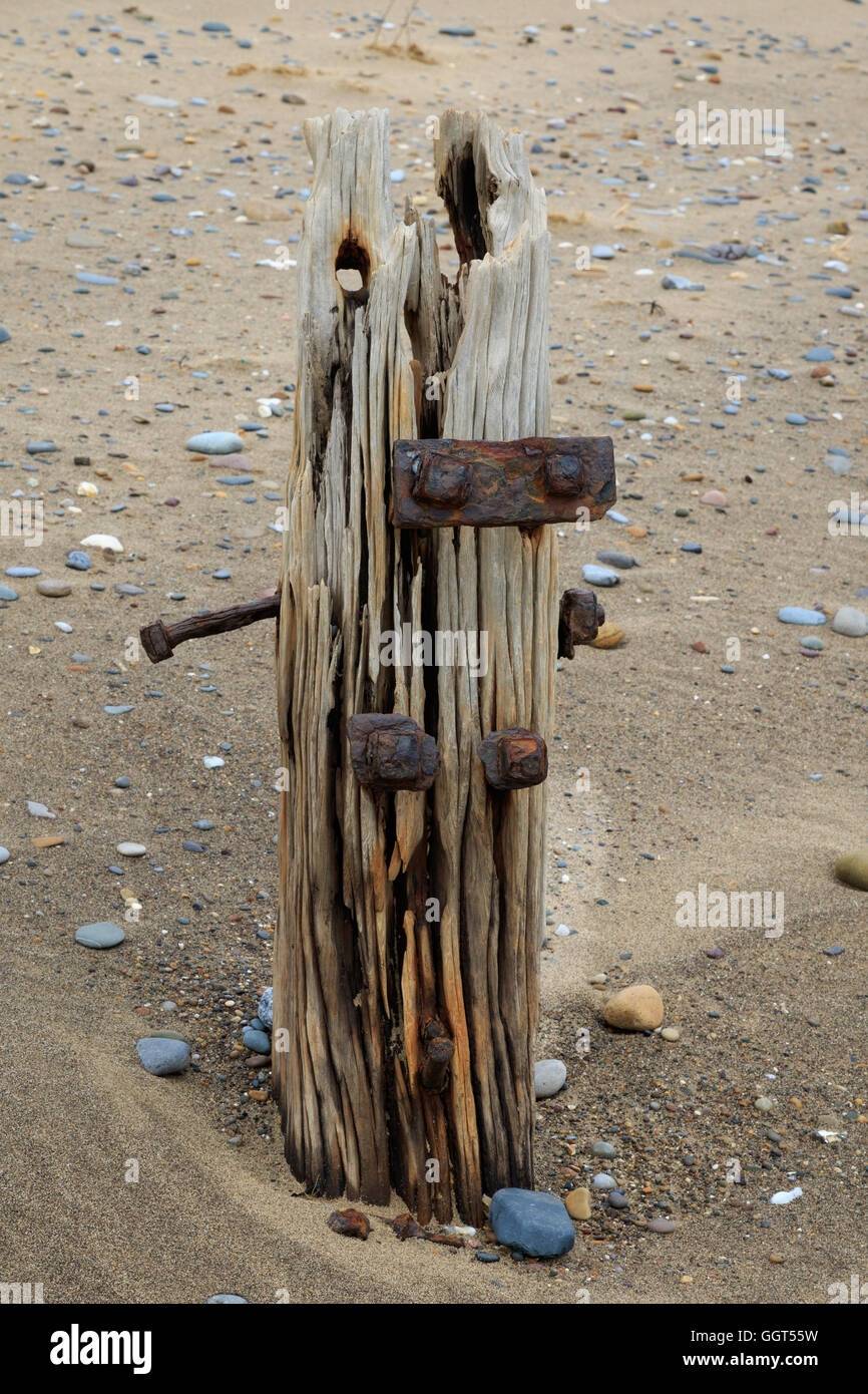 Wooden groynes on the beach at spurn point - Stock Image