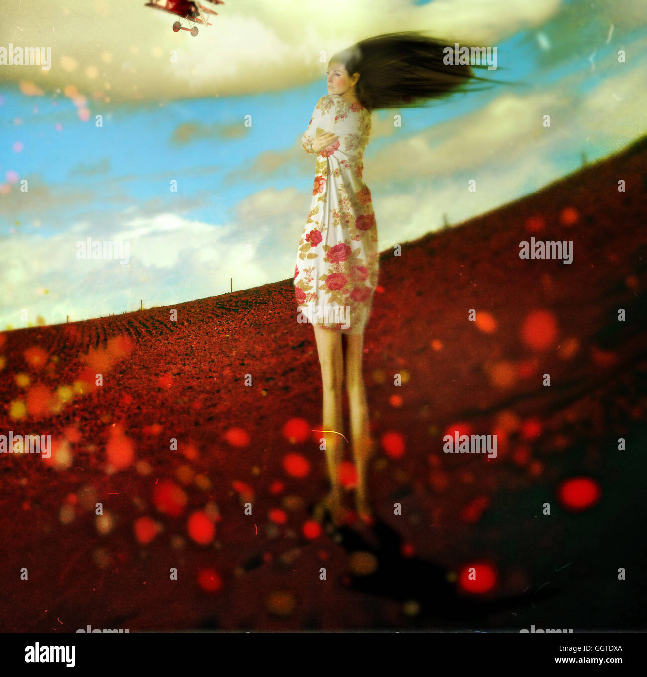 young woman standing in poppy field holding herself looking in distance - Stock Image