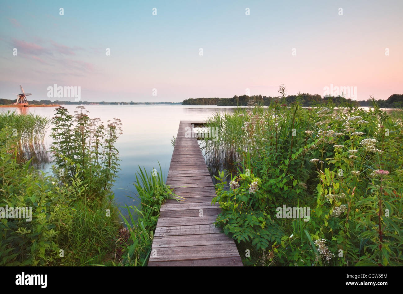 wooden pier on big lake in summer, Groningen, Netherlands - Stock Image