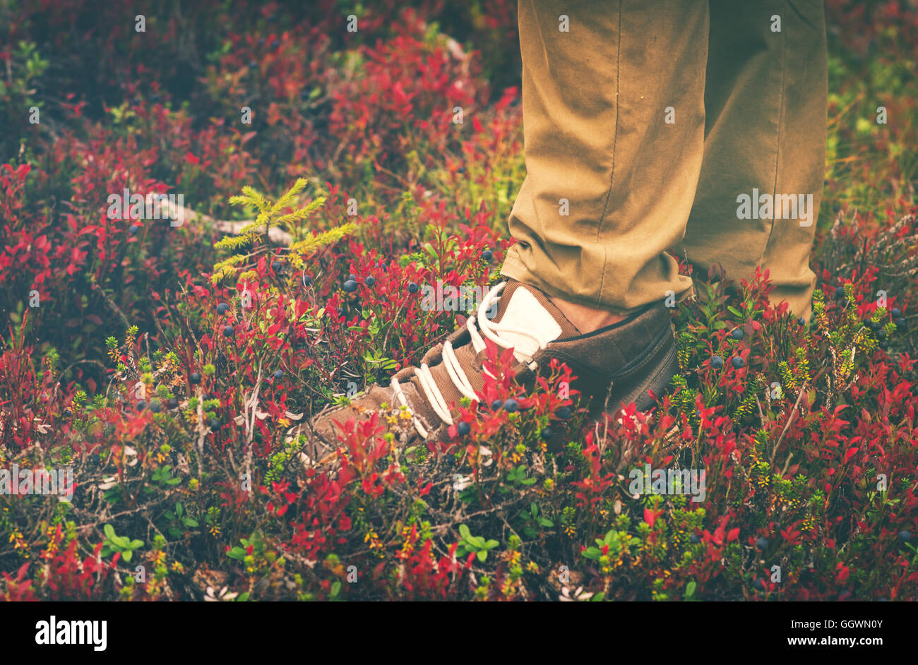 Feet Man Sneakers shoes walking Outdoor Travel Lifestyle Fashion trendy style forest nature on background - Stock Image